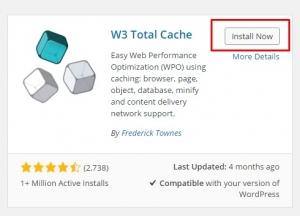 W3Total-Step2-InstallNow