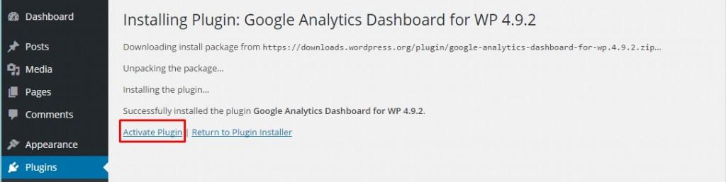 WordPress-Google-Analytics-Activate